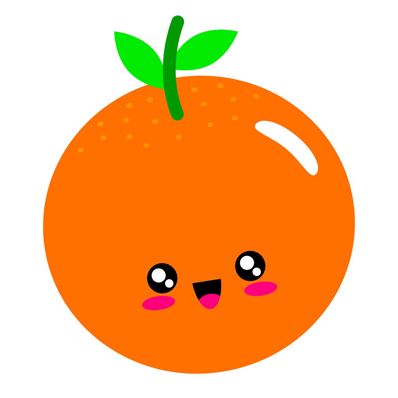 orange, illustration, fruit